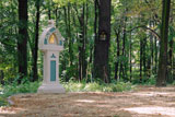 Kapliczka pośród drzew